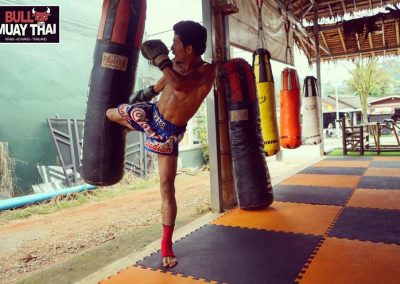 bull-muay-thai-training-bag-kick