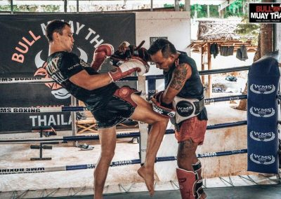 Bull Muay Thai Training On Ring